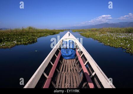 Boat trip on Inle Lake, floating gardens on both sides, Inle Lake, Shan State, Myanmar - Stock Photo