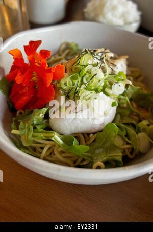 Bowl of Summer ramen noodle bowl with spicy teriyaki chicken, shitake mushrooms, and greens.  Kuma restaurant in - Stock Photo