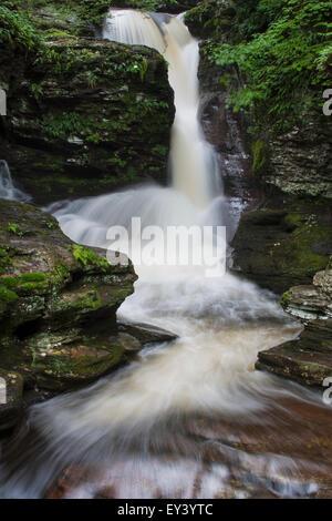 The Adams Falls waterfall in Ricketts Glen State Park, Pennsylvania. - Stock Photo