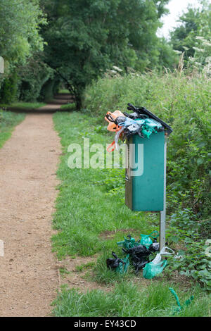 Overflowing Dog waste bin on a woodland path in the english countryside. UK - Stock Photo