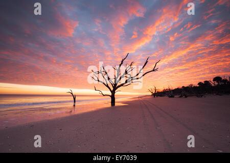 Botany Bay Beach At Cloudy Sunset Edisto Island South Carolina USA