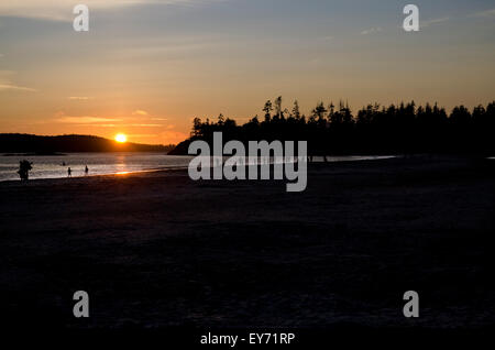Sunset on Mackenzie Beach in Tofino, British Columbia.  People walking on the beach, Pacific ocean, forest, mountains. - Stock Photo
