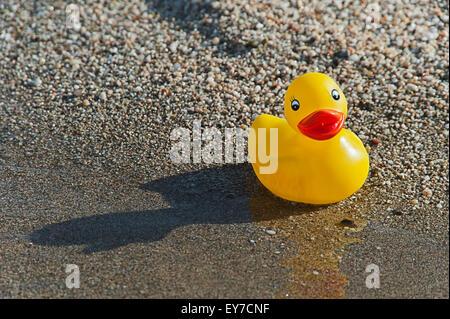 Single rubber duck on beach - Stock Photo