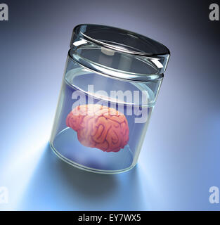 Human brain in a large jar - Stock Photo