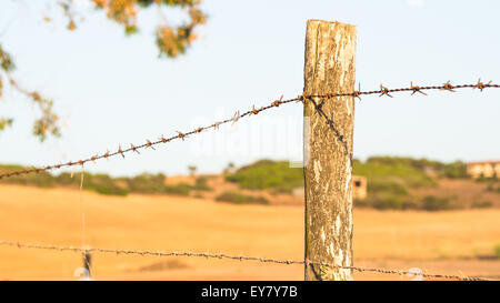 Wire Mesh - Point of view - Stock Photo