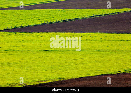 Farm field spring cultivation patterns. - Stock Photo