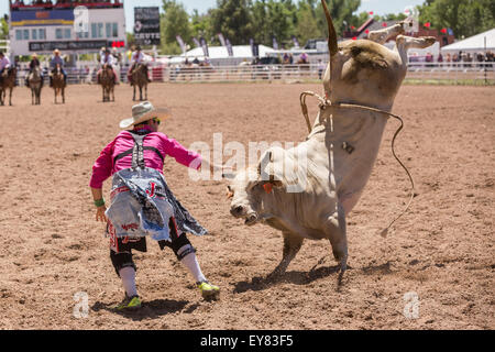 Rodeo Cowboy Bull Riding While A Clown Looks On At The
