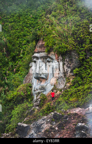 Huge face carving on hill. - Stock Photo