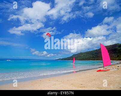 Catamaran on sandy shore beach and on the water under parasailor on Mahe Island in the Seychelles - Stock Photo