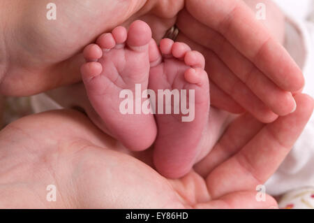 Close up of newborn baby's feet cupped in mums hands - Stock Photo