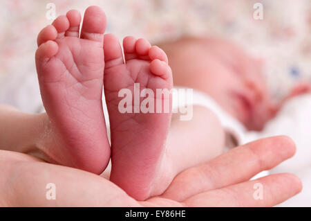Close up of newborn baby's feet - Stock Photo