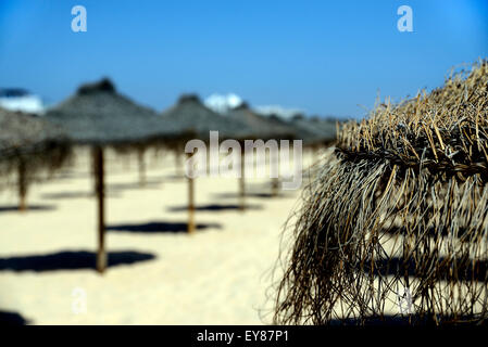 Single and line of straw parasols on golden beach and blue sky - Stock Photo