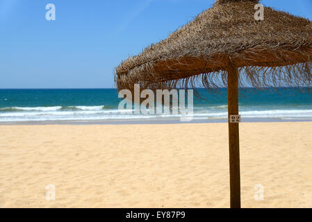 Lone straw parasol, number 22 - Stock Photo