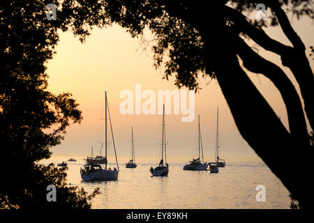 A view of a group of sailboats anchored in the Adriatic sea at sunset in Rovinj, Croatia. - Stock Photo