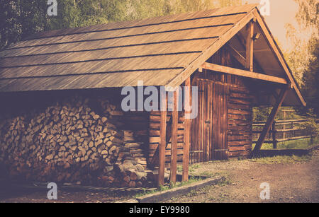 Wooden shed and prepared logs somewhere in forest - Stock Photo