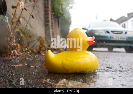 Wimbledon London, UK. 26th July 2015. Weather for ducks on a wet rainy day in London Credit:  amer ghazzal/Alamy - Stock Photo