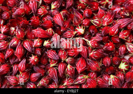 Background made of hibiscus sabdariffa or roselle fruits - Stock Photo