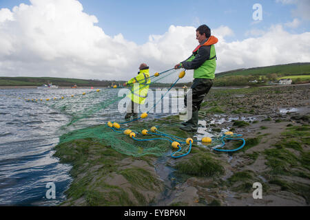 Licensed fishermen using traditional Seine Netting methods on the river Teify (Tivy) at Poppit Sands, west Wales - Stock Photo