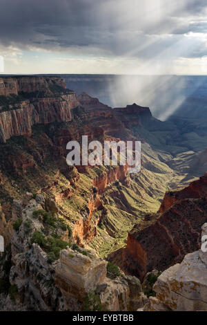 Grand Canyon National Park, North Rim, Arizona - Stock Photo