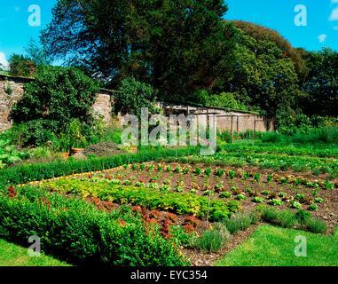Creagh, Baltimore, Co Cork, Ireland, Vegetables And Fruit In A Walled Garden - Stock Photo