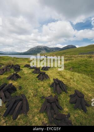 Piles Of Peat Turf In Connemara National Park; County Galway, Ireland - Stock Photo