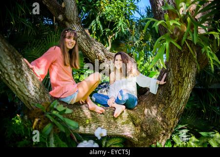 Portrait of two young female friends sitting cross legged in tree - Stock Photo