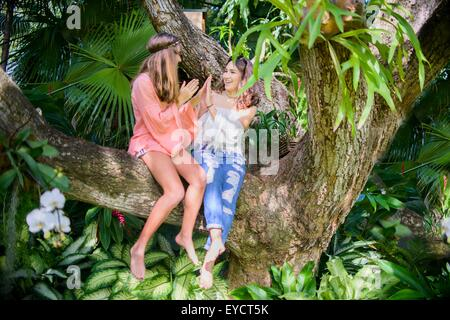 Two young female friends playing clapping game in tree - Stock Photo
