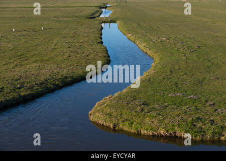 A green Dutch polder (reclaimed land) and its ditches & gullies reflecting the blue winter sky near Broek in Waterland, - Stock Photo