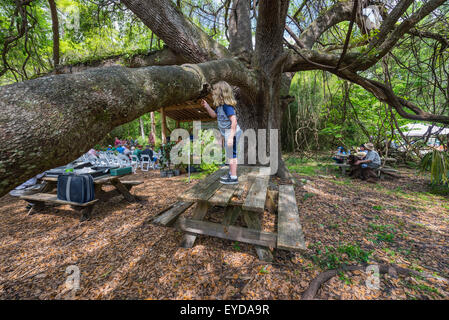 Annual Spring Garden Festival At Kanapaha Botanical Gardens In Stock Photo Royalty Free Image