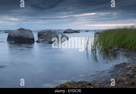 Calm Ocean with Rocks and Sea Weed. - Stock Photo
