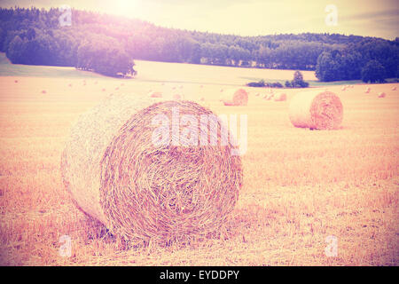 Vintage instagram toned harvested field with hay bales. - Stock Photo