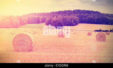 Vintage toned harvested field with hay bales at sunset. - Stock Photo