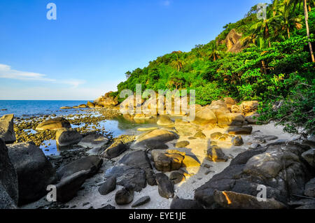 panoramic tropical beach with coconut palm. Koh Samui, Thailand, Asia - Stock Photo
