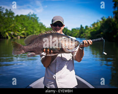 Black Barramundi (Lates calcarifer) fishing in the rivers of West New Britain; Papua New Guinea - Stock Photo