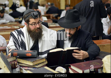 Religious Jewish men study together in a synagogue in Crown Heights, Brooklyn, New York - Stock Photo