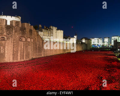 Poppies at Tower of London at dusk; London, England - Stock Photo