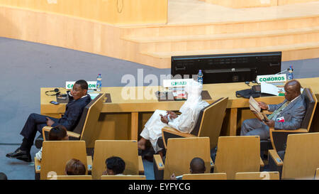 Addis Ababa, Ethiopia. 28th July, 2015. High level delegate of Cameroon, Chad and Comoros await the arrival of President - Stock Photo
