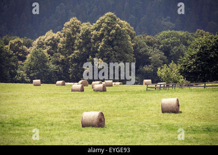 Retro toned summer field with hay bales, old film vignette effect. - Stock Photo