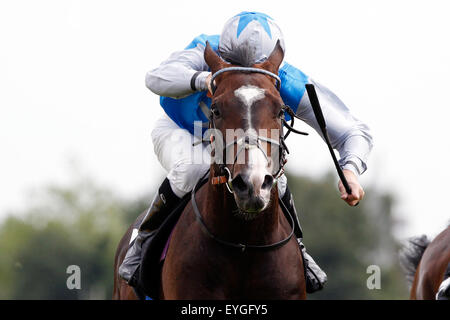 Hamburg, Germany, horse and jockey during a gallop race in action - Stock Photo