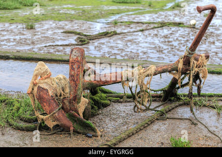 A rusty anchor at low tide, Pin Mill port, on River Orwell, south Suffolk, East Anglia, England, Great Britain, - Stock Photo