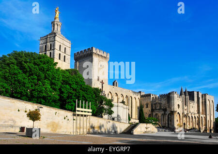 a view of the Palais des Papes, the Palace of the Popes, in Avignon, France - Stock Photo