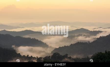 Beautiful tropical mountain mist in rain forest, Thailand. - Stock Photo