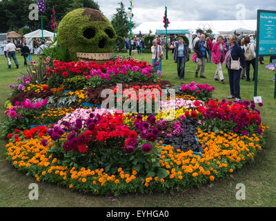 Flower bed The Day of the Dahlia by Birmingham City Council at RHS  Cheshire Flower Show Tatton Park England - Stock Photo