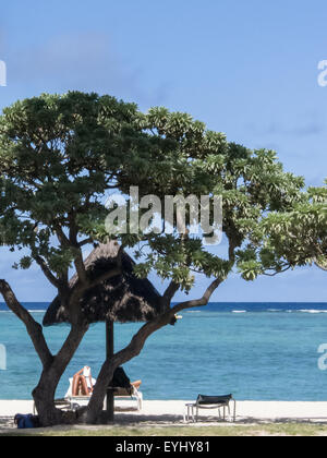 Flic en Flac, Mauritius. La Pirogue tourist resort. Sunlounger, tree and sea. - Stock Photo