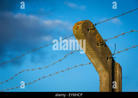 Top of a concrete bent arm chainlink intermediate post with 3 lengths of uneven barbed wire running through it under - Stock Photo