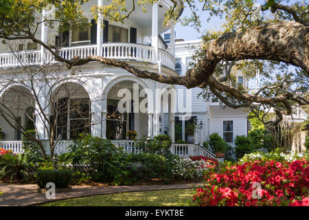 Historic Meeting House Inn at Meeting St and the Battery in Charleston, SC. Flowering azaleas are visible in the - Stock Photo