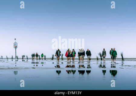Germany, low things, new plant, Cuxhaven, wadden sea, mud flats, team, person, walk, - Stock Photo