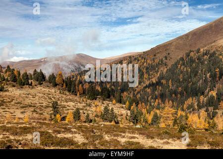 Herbst im Nationalpark Nockberge, Kärnten, Österreich, Peitlernock - Stock Photo