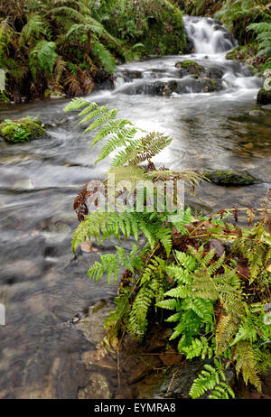River flowing into Derwentwater in the Lake District National Park, Cumbria, England - Stock Photo