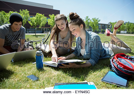 College students studying together on sunny campus lawn - Stock Photo